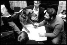 Social-gatherings